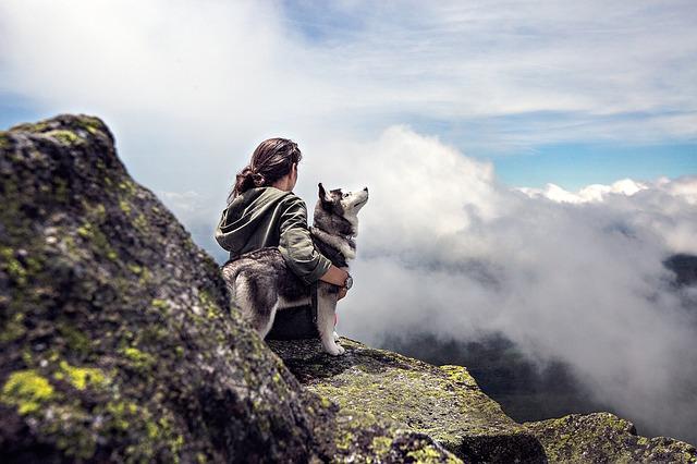Citazioni e frasi sull'avventura