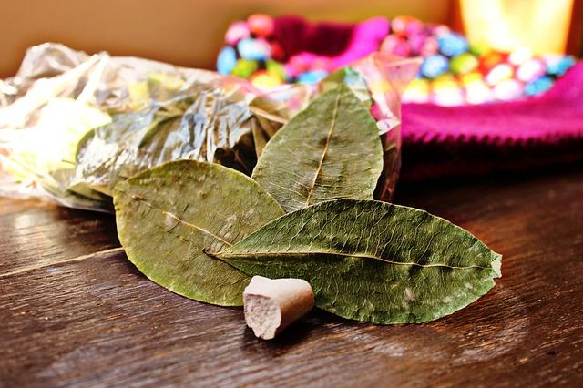 coca, rimedio naturale per AMS