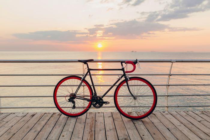 migliori custodie trasporto bici