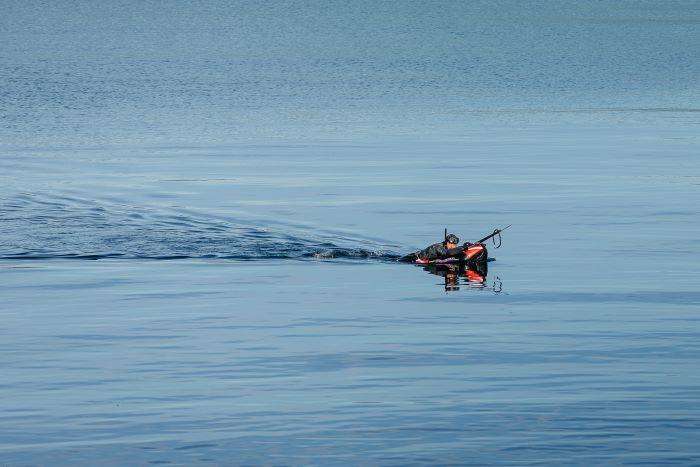 pesca subacquea apnea illegale