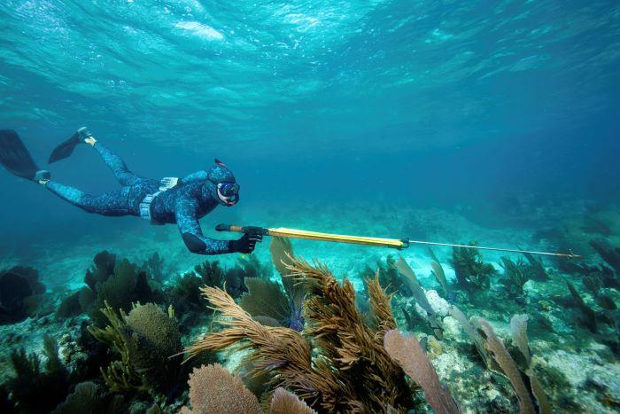 regole sulla pesca subacquea