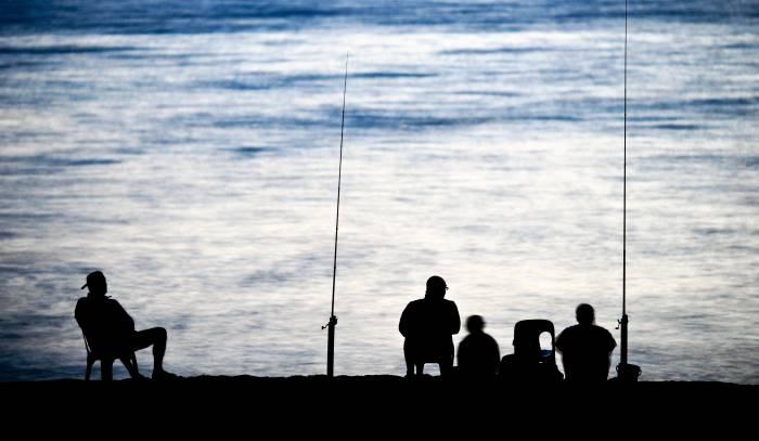 libro sulla pesca in mare tecniche, habitat e fauna