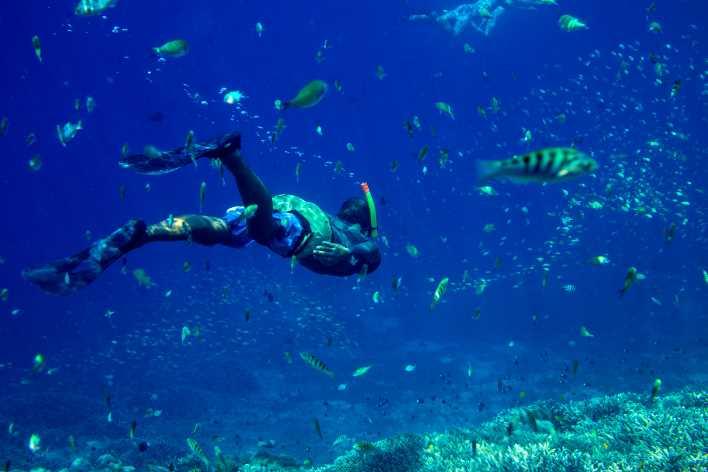 immersioni e snorkeling salento